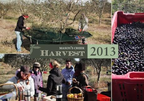 Harvest2013
